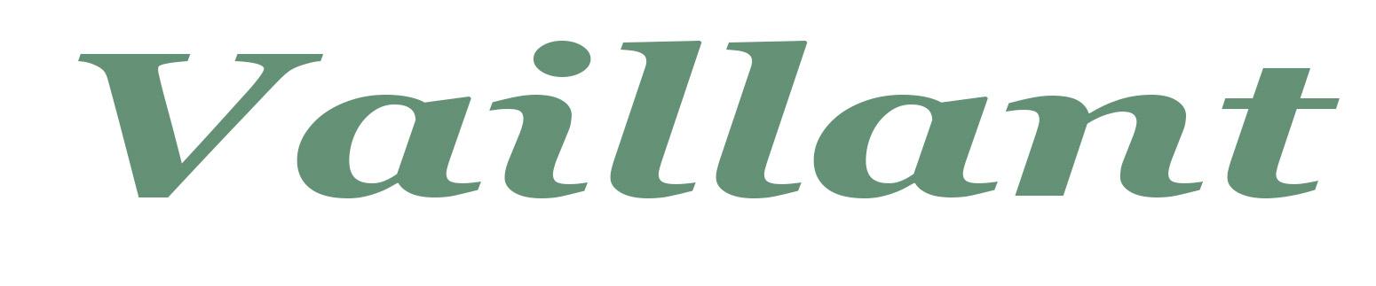 Servicio Tecnico Especializado Vaillant – Reparación Calderas